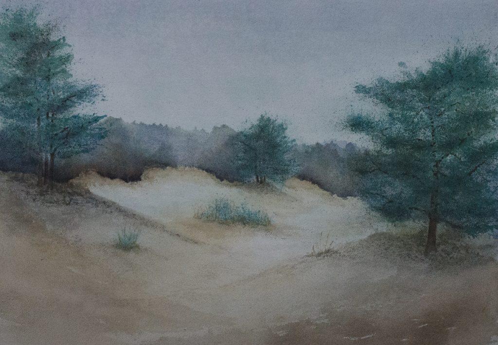 het witte zand ( Veluwe NL)